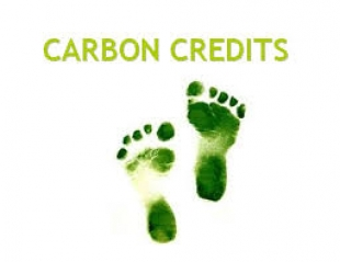Invitation to experts on carbon issues for policy review and network meeting Barcelona