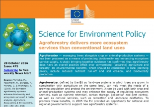 Agroforestry delivers more ecosystem services than conventional land uses