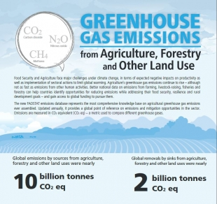 Greenhouse gas emissions from Agriculture, Forestry and other Land Use