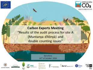 Active discussion on double counting issues during the Carbon Experts Meeting - Barcelona