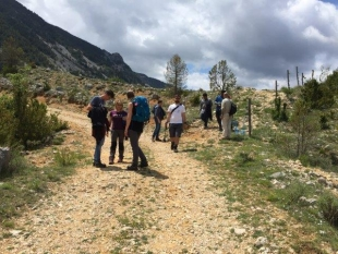 European forestry master students visit the plantation in Alinyà